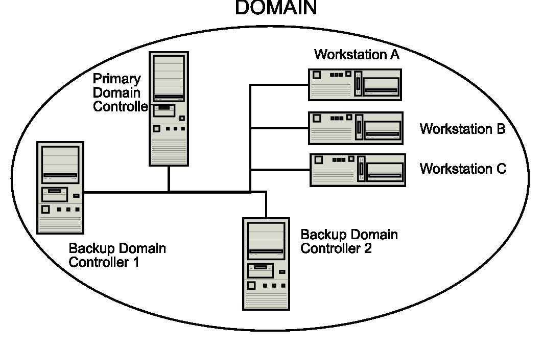 Domain controller là gì? Kiến thức cơ bản về domain controller  - Ảnh 1.