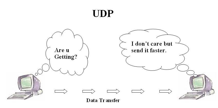 User Datagram Protocol - UDP là gì? Các ứng dụng và tính năng phổ biến của UDP - Ảnh 2.