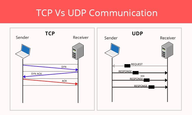 User Datagram Protocol - UDP là gì? Các ứng dụng và tính năng phổ biến của UDP - Ảnh 1.