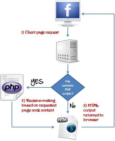 PHP là gì? Bắt đầu viết câu lệnh PHP đầu tiên của bạn - Ảnh 1.