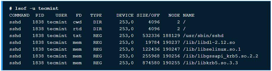 10 ví dụ sử dụng chương trình lệnh lsof trên Linux - Ảnh 2.