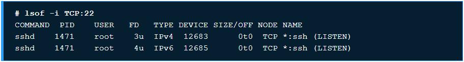 10 ví dụ sử dụng chương trình lệnh lsof trên Linux - Ảnh 3.