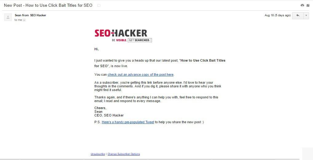 Email marketing là gì? Ví dụ về các loại email marketing và mục đích của chúng - Ảnh 2.