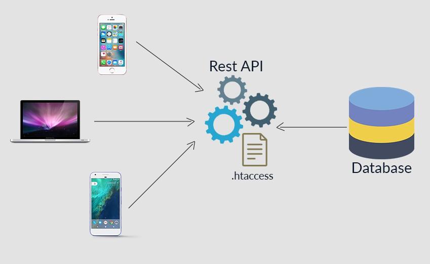 Web service là gì? Lợi ích và ví dụ về web service - Ảnh 1.
