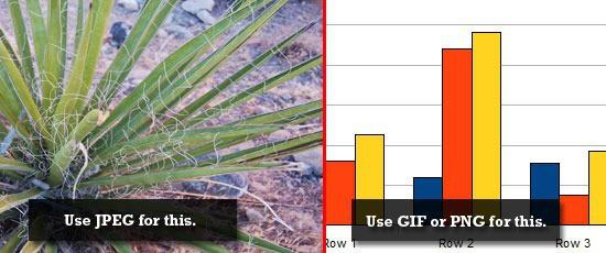10 cách cải thiện hiệu suất website tập trung vào front-end performance (P1) - Ảnh 2.