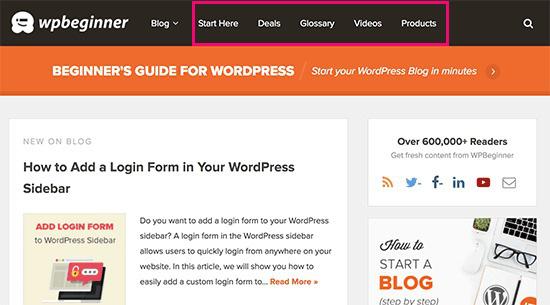 Blog là gì? Blog khác với website như thế nào? Ví dụ về blog - Ảnh 2.