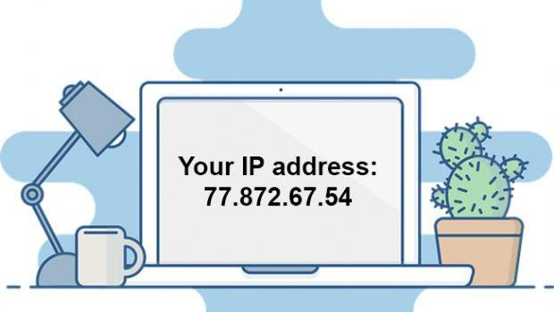 Hướng dẫn check IP website cực nhanh và chuẩn - Ảnh 1.