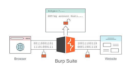 Burp Suite cho phép đăng nhập website trước khi thực hiện các nhiệm vụ quét và tấn công khác