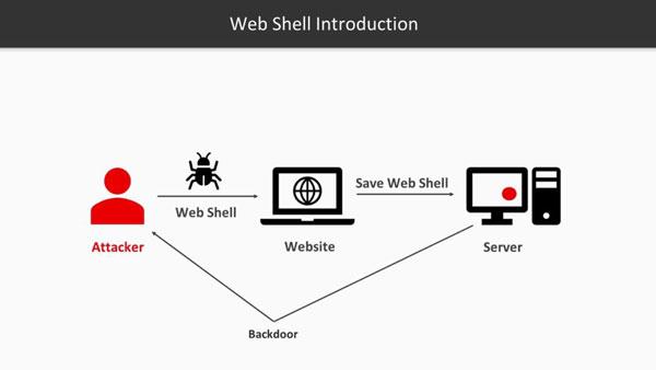 Sử dụng Webshell để làm gì