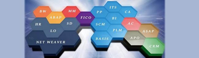 SAP là gì? Tổng quan về nhà cung cấp phần mềm Doanh nghiệp lớn nhất thế giới - Ảnh 3.
