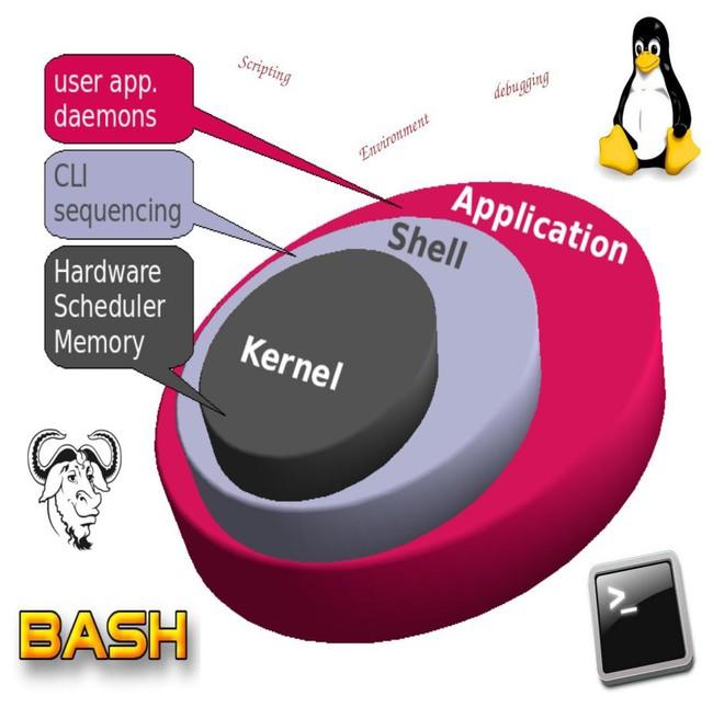 Shell là gì? 4 loại Shell phổ biến nhất hiện nay - Ảnh 2.