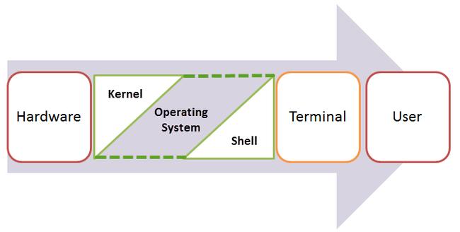 Shell là gì? 4 loại Shell phổ biến nhất hiện nay - Ảnh 1.