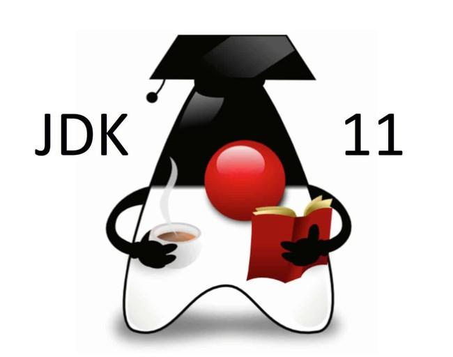 Hướng dẫn tải JDK 11 và cài đặt trên Windows, bắt đầu làm quen với lập trình Java - Ảnh 1.