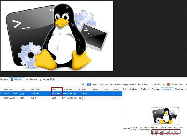Hướng dẫn tối ưu kích thước hiển thị hình ảnh trên website - Ảnh 2.