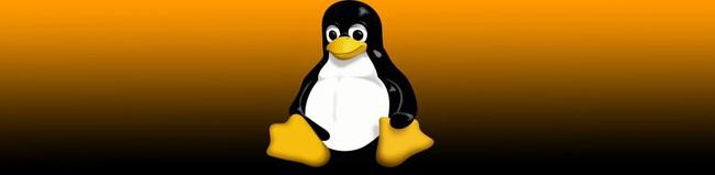 PSYCHOS: Phiên bản Linux với style hoài cổ dành cho PC đời trước - Ảnh 1.