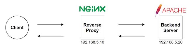 Hướng dẫn cấu hình Reverse Proxy với NGINX mới nhất - Ảnh 1.