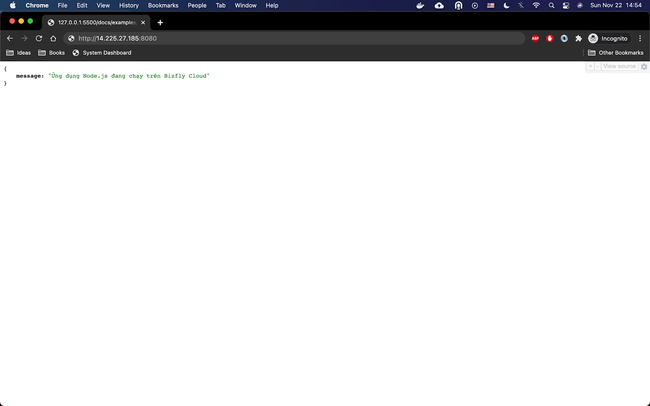 Sử dụng Node.js dễ dàng cho lập trình viên trên máy chủ ảo của BizFly Cloud - Ảnh 13.