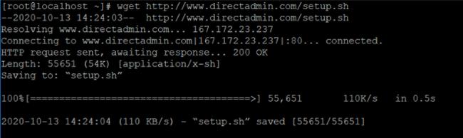 Các bước cài đặt DirectAdmin trên máy chủ Cloud Server Linux - Ảnh 3.