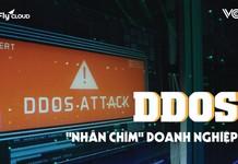 Hãy cẩn thận với DDoS - cuộc tấn công có khả năng nhấn chìm doanh nghiệp