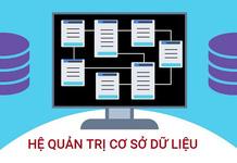 Hệ quản trị cơ sở dữ liệu là gì? Top hệ quản trị CSDL hay dùng