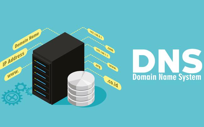 Hướng dẫn chỉnh cấu hình DNS trong BizFly CDN