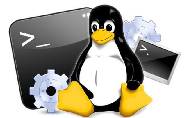Hệ điều hành Linux là gì? Ưu điểm và nhược điểm của HĐH Linux