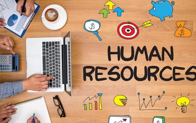 Top phần mềm nhân sự giúp quản lý doanh nghiệp SMEs chuyên nghiệp